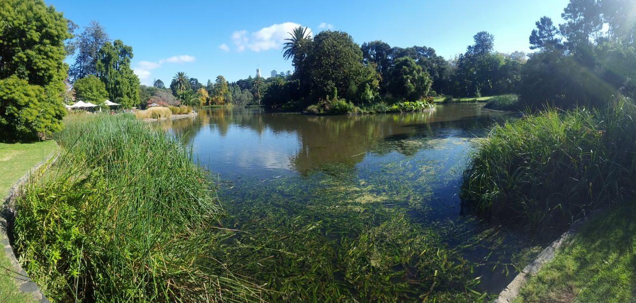Lac RBG