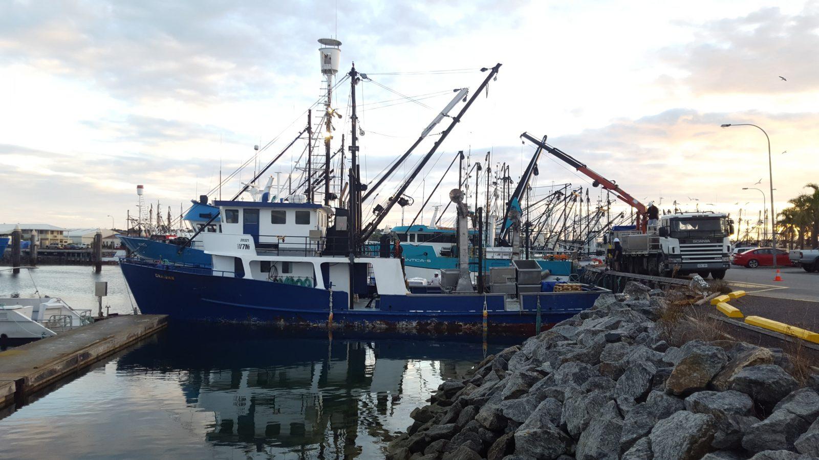 bateau marina
