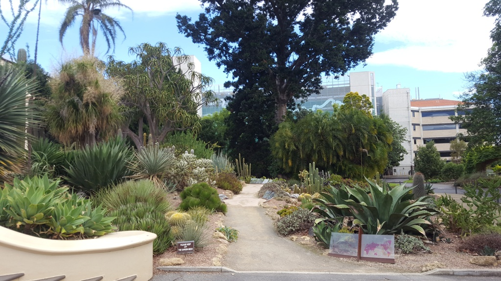 pampa jardin botanique