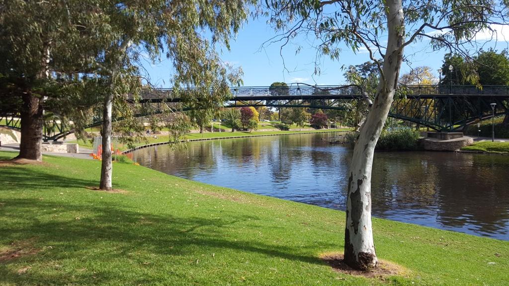 Jardin botanique rivière