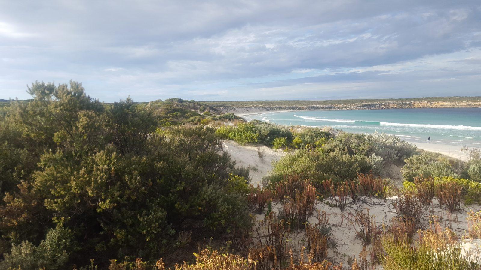vue dune plage