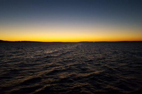 Article : Un rendez-vous manqué à Port Lincoln