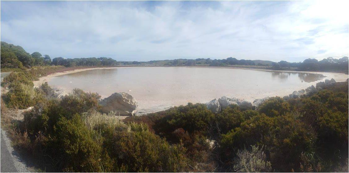 Pink Lake Rottnest Island
