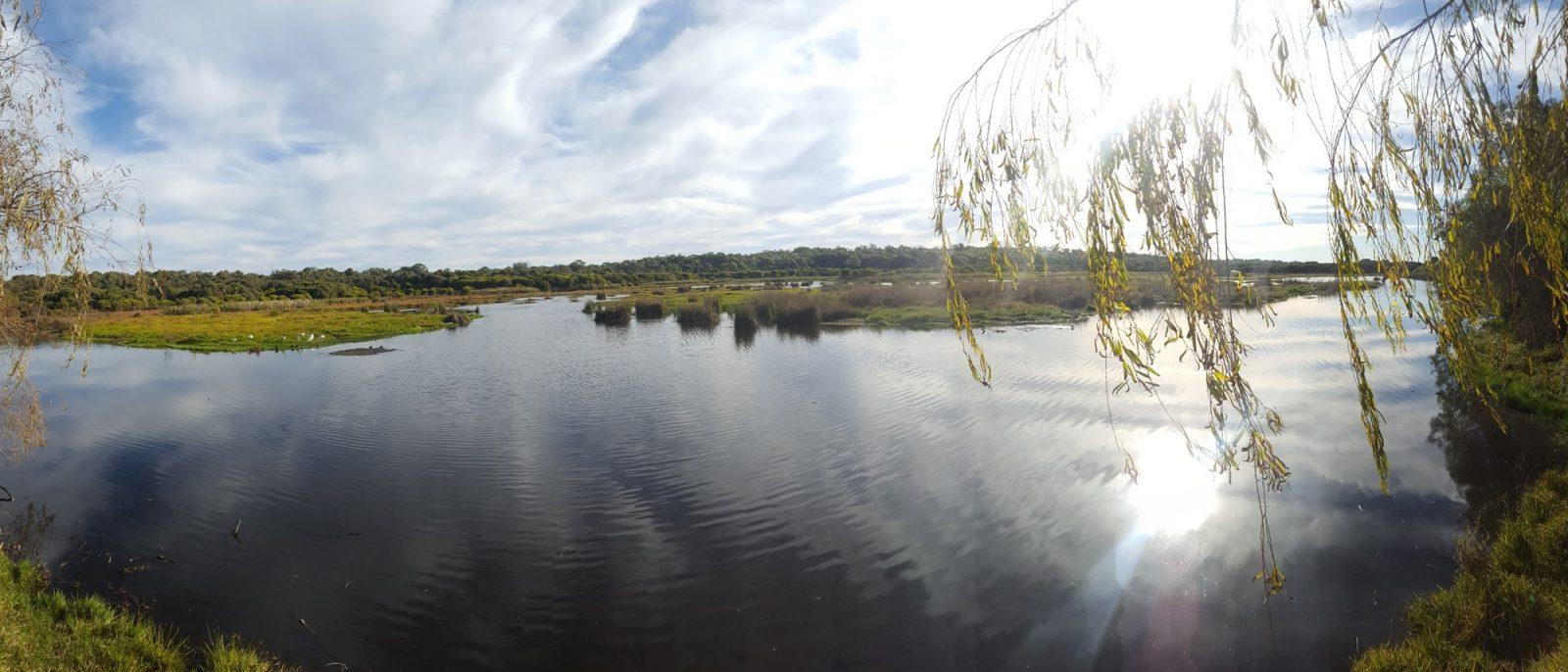Loch McNess