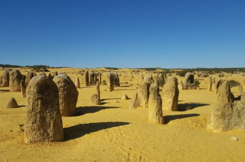 Article : Les Pinnacles et Jurien Bay, la nature à l'état brut