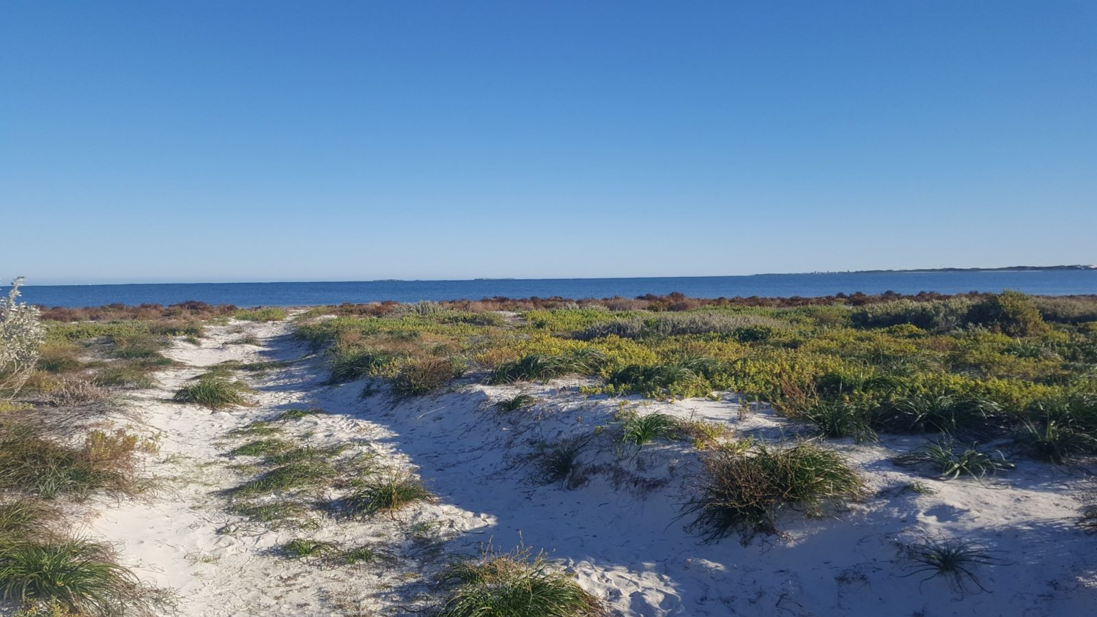 Kangaroo Point plage