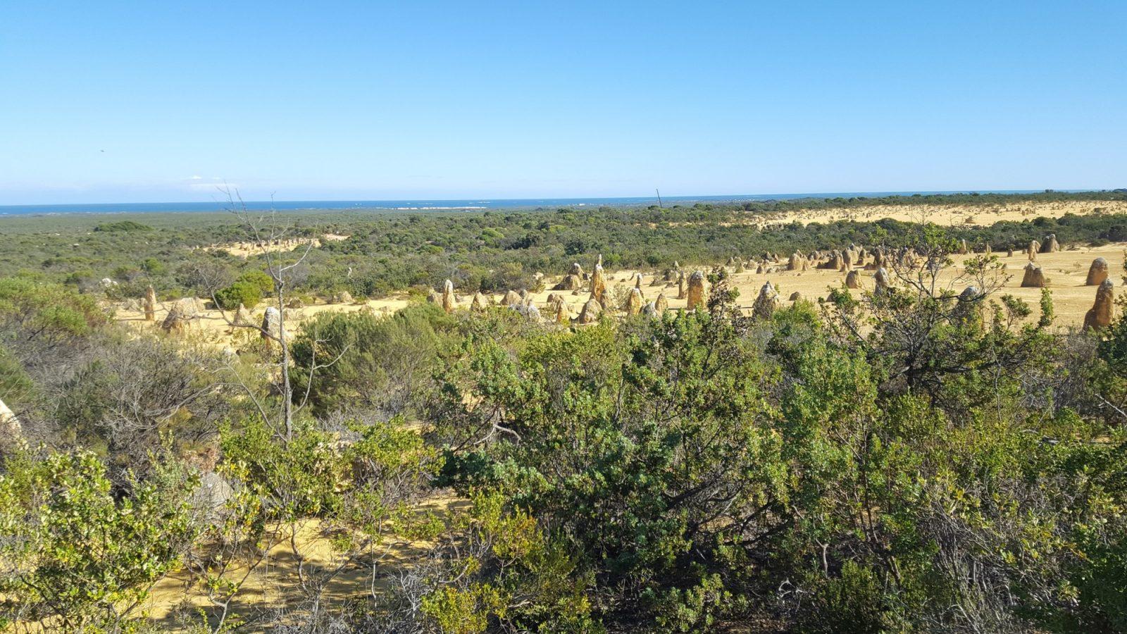 Nambung panorama