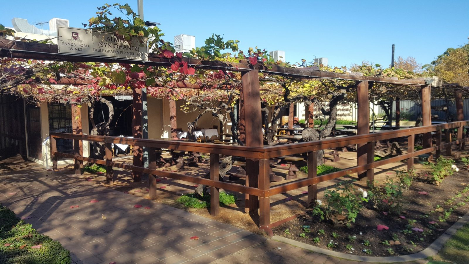 Restaurant vignoble