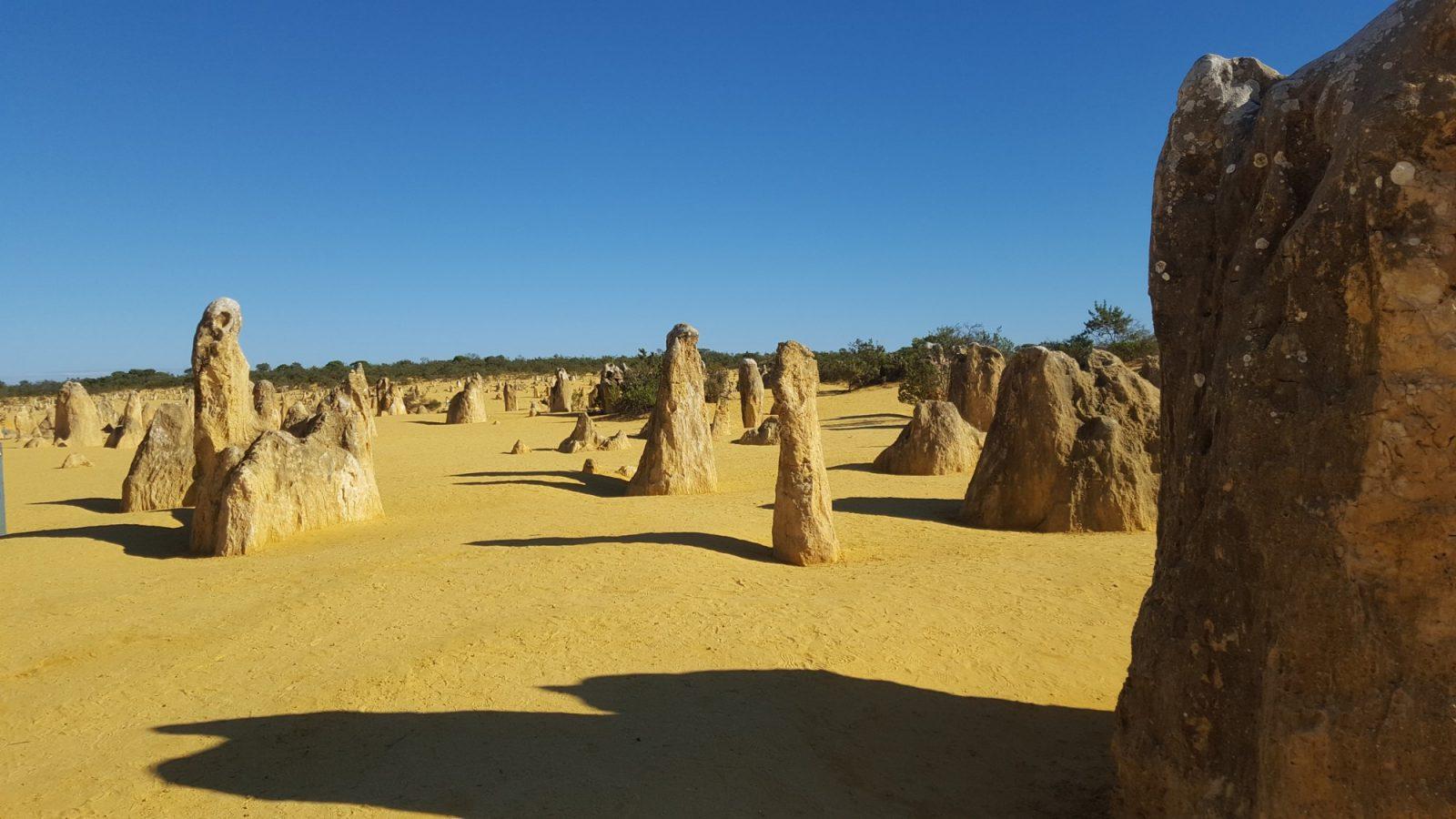 Pinnacles désert Nambung
