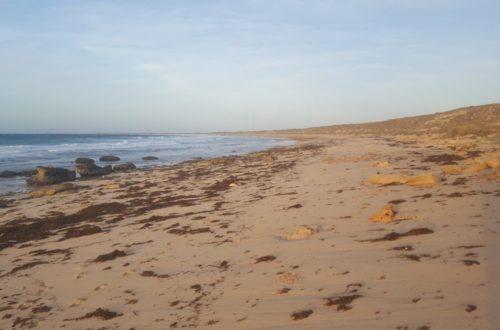 Article : Exmouth, une destination phare du Western Australia