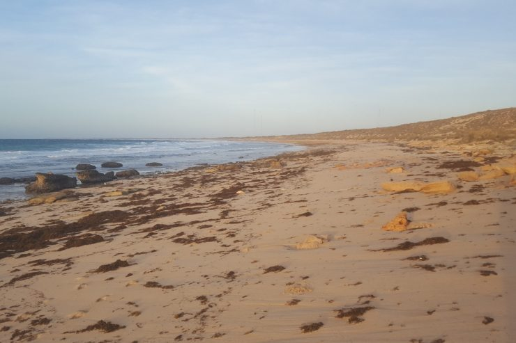 Exmouth, une destination phare du Western Australia