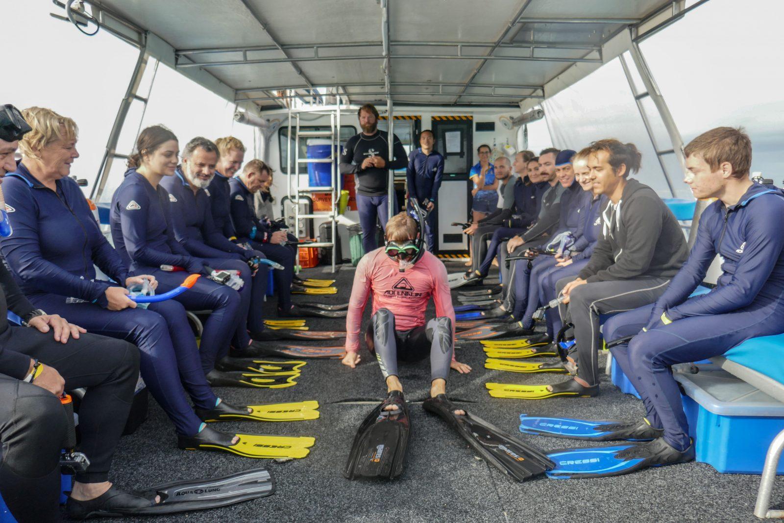 Règles plongée Ningaloo Whale Sharks