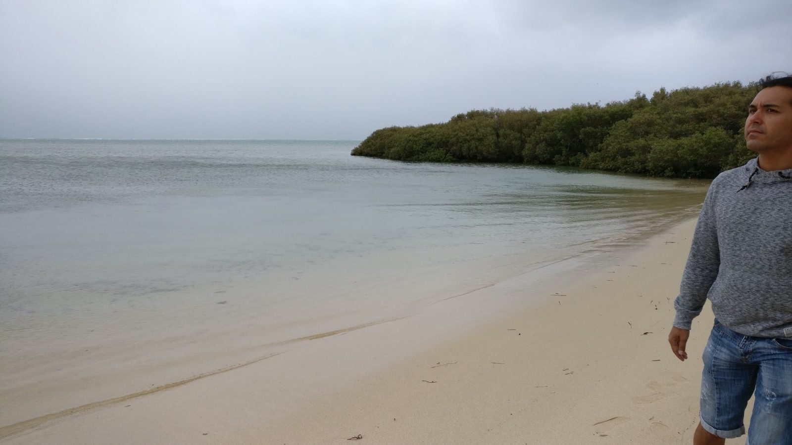Mangrove Bay balade
