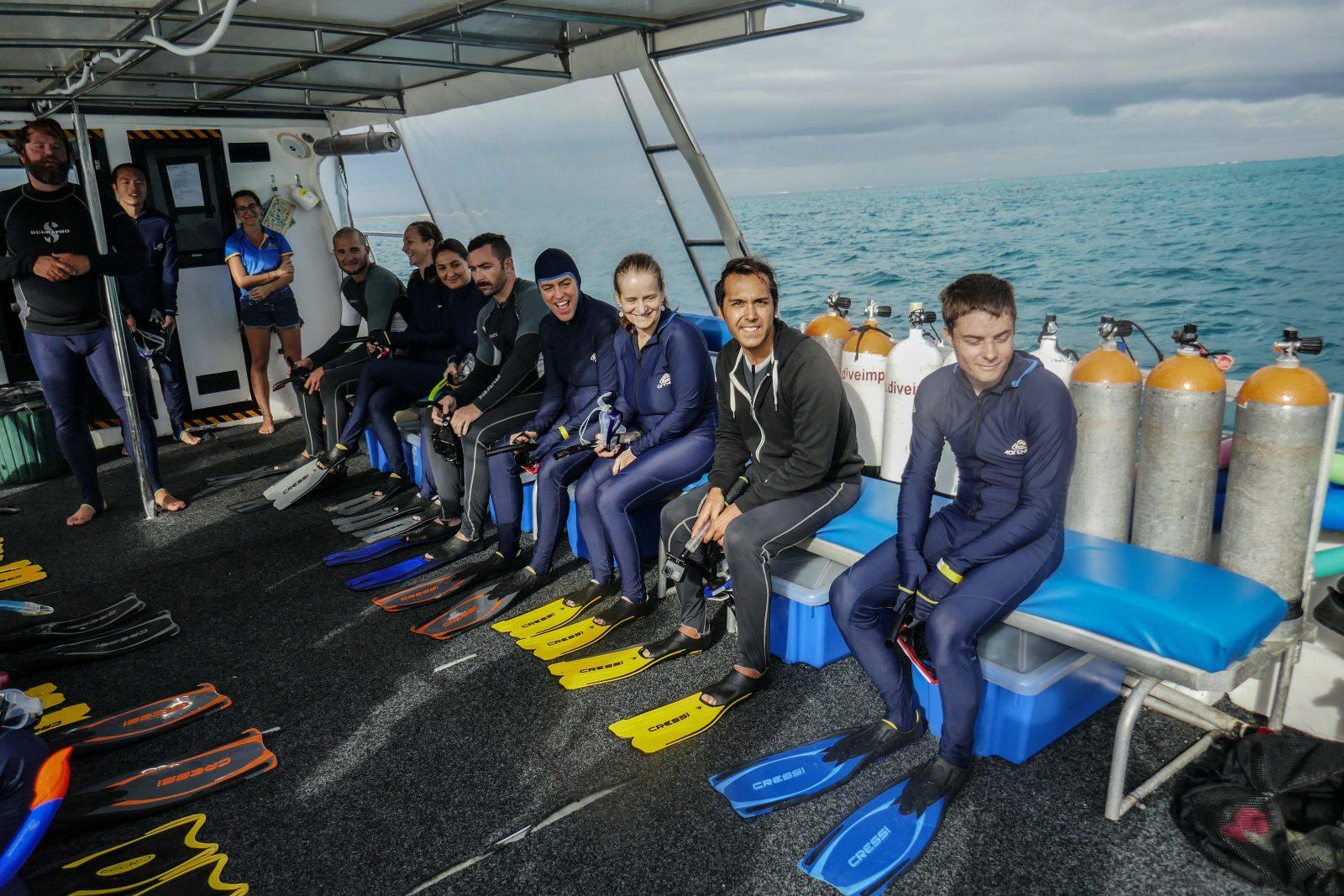 Cours de plongée Ningaloo Whale Sharks