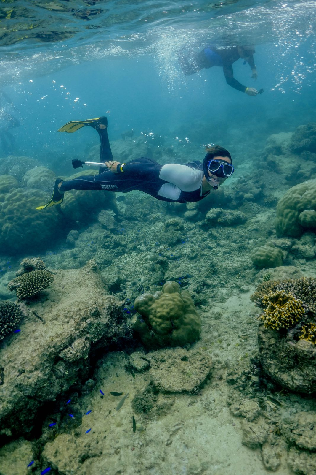 Plongée Ningaloo Reef