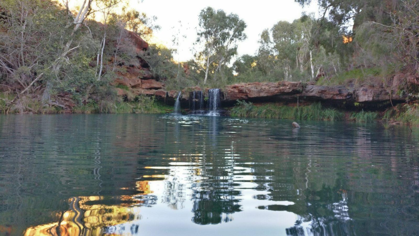 Fern Pool Dales Gorge